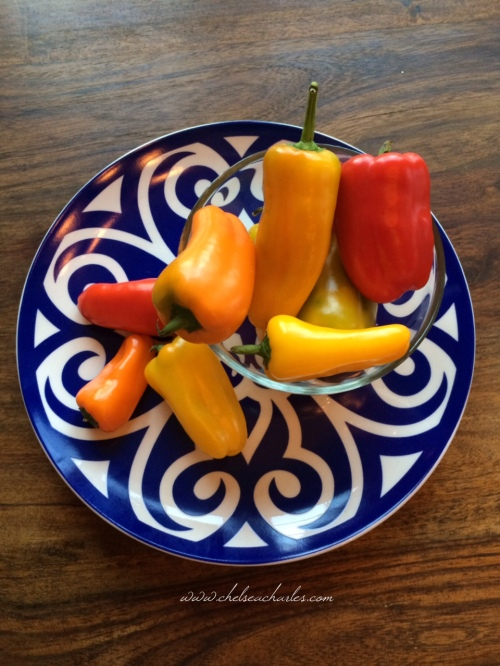 Mini Sweet Peppers have a really satisfying crunch. A healthy alternative to chips or crackers when dipping